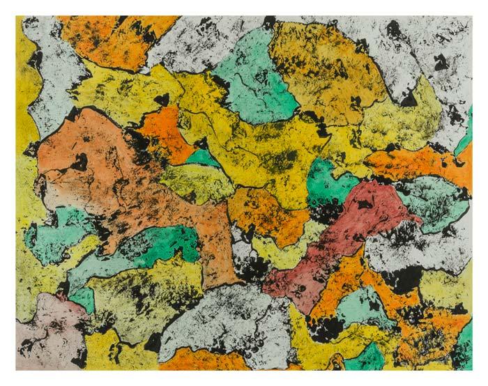 Kleurenpalet 50 op 65 cm | Te koop