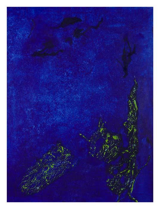 Onderwaterwereld 60 op 80 cm | Te Koop