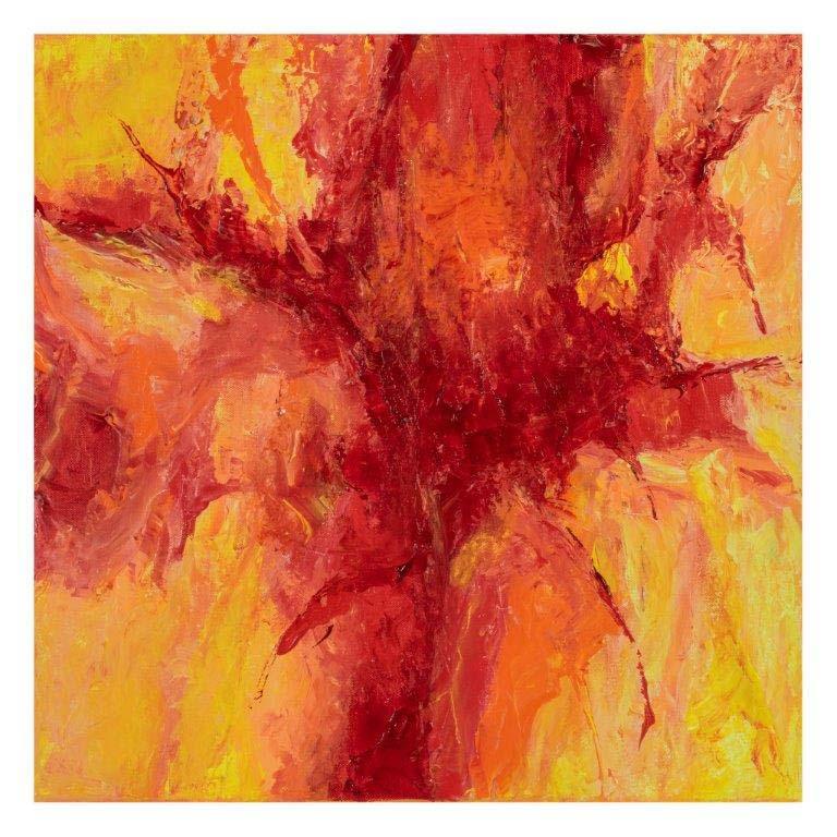 Explosie van rood 50 op 50 cm | Te Koop